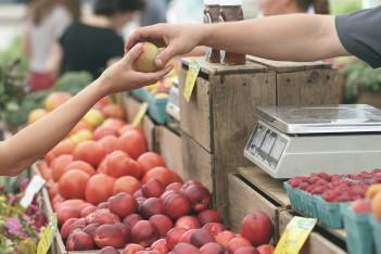 Ponad 4 mln zł na targowiska z lokalnymi produktami