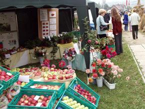 Imprezie towarzyszyła wystawa sprzętu rolniczego oraz prezentacja oferty rolników i hodowców.